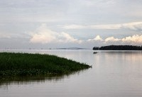 At Least 42 People Have Drowned After a Ferry Capsized in Lake Victoria, Tanzania