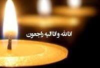 هیات دولت دوشنبه دوم مهر را عزای عمومی اعلام کرد