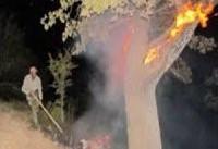 شهادت یک سرباز حین خاموش کردن آتش سوزی جنگل در ایلام