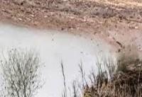 اختصاص اعتبار برای مقابله با آثار خشکسالی در برخی از زیستگاه&#۸۲۰۴;ها و تالاب&#۸۲۰۴;ها