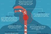 ۱۰ راهکار طلایی برای درمان گلودرد +اینفوگرافی