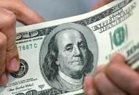 هشدار به خریدران ارز: احتمال ضرر کردنتان بالاست/ قیمت واقعی دلار ۸ یا ۹ هزار تومان است