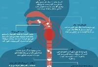 اینفوگرافی / ۱۰ راه ساده برای درمان گلودرد