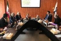تفاهمنامه همکاریهای مشترک دانشگاه علوم پزشکی تهران و دانشگاه دمشق به امضا رسید