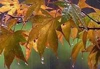 تداوم بارش باران/ورود سامانه بارشی جدید به کشور از شنبه