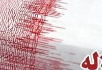 زمینلرزه در مردهک کرمان/ ارسال تیمهای ارزیاب به منطقه زلزلهزده