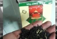کشف ماری جوانا در بستههای چای