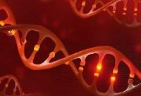 چطور ژنهای مرتبط با چاقی را غیرفعال کنیم؟