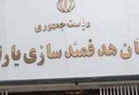 نماینده مجلس مستندات پرداخت یارانه به ایرانیان خارج از کشور را ارایه کند