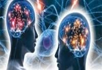 ساخت دستگاه&#۸۲۰۴; نوری جدید برای تصویربرداری از مغز درکشور