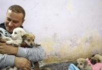 عکس روز | پناهگاه حیوانات