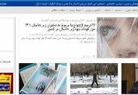 آخر هفته برفی در تهران/اعلام شمار سارقان حرفهای در کشور