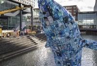 عکس روز: ضایعات پلاستیکی