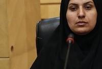 محمودی: وحدت و همدلی به تداوم انقلاب کمک میکند