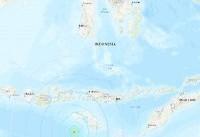 زلزله پرقدرت ۶ ریشتری جنوب اندونزی را لرزاند