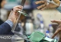 تاریخ انتخابات ۸ فدراسیون ورزشی اعلام شد
