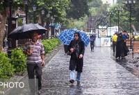 بارش باران در اغلب استانهای کشور