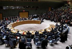 نشست شورای امنیت برای بررسی عملیات ترکیه در کردستان سوریه