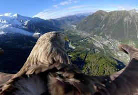 رشته کوه زیبای آلپ از دید یک عقاب +عکس