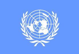 تاکید سازمان ملل بر انجام تحقیقات شفاف و دقیق درباره سانحه سقوط هواپیمای اوکراینی