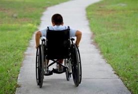تسریع در بررسی آییننامههای قانون معلولان در دولت/تصویب تا آذر