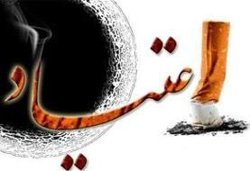 کشف ۸۰۰ تن مواد مخدر از سوی ایران در سال ۹۷
