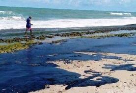 آغاز عملیات پاکسازی سواحل برزیل از آلودگی نفتی