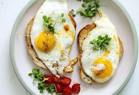 حقایقی در باره تخممرغ؛ بالاخره خوب است یا مضر؟ | همهٔ تخممرغها را در یک سبد نگذارید