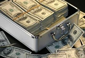 کشف ۱۲۰۰۰۰ دلار از یک مسافر در یکی از فرودگاههای ایران