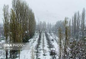 هواشناسی: بارش برف و باران در ایران