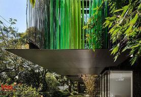 ساختمان مسکونی سبز در مکزیکوسیتی؛ پروژهای برای آرامش! (+تصاویر)