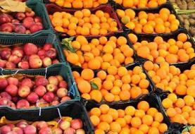 خوردن پرتقال در زمستان فراموش نشود/میوه ای که نشاط آور است