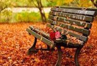 چگونه در فصل پاییز سلامت باشیم؟