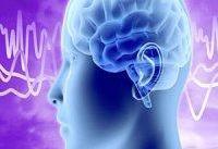 ارتباط فعالیت بیش از اندازه مغز با کوتاهی عمر