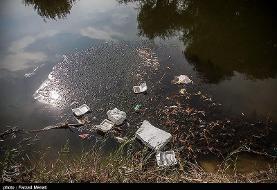 تلف شدن هزاران ماهی در رودخانه قره سو +تصاویر