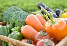 هشدار برای گیاهخواران: کمبود شدید ویتامین B ۱۲ در کمین است