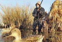 محیط&#۸۲۰۴;زیست شکارچی اردک شد