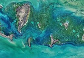 واکنش تند رئیس سازمان محیط زیست ایران به منتقدان طرح انتقال آب دریای خزر