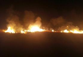 آتشسوزی در تالاب هامون