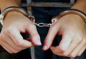 دستگیری یک دلال دیگر غیرحکومتی سکه و ارز با گردش حساب ۱ تریلیونی!