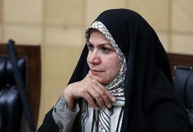 ذوالقدر: موانع جدایی ری از تهران بررسی شود