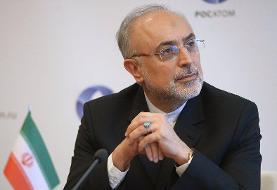 صالحی: ایران به ایمنی نیروگاه هسته ای بوشهر اطمینان کامل دارد