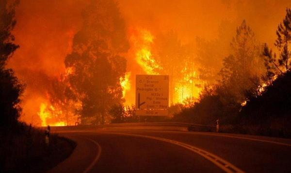 گرمایش زمین؟  آتش سوزی وحشتناک در استرالیا: هشدار آتش سوزی «فاجعه بار» برای ساکنان سیدنی