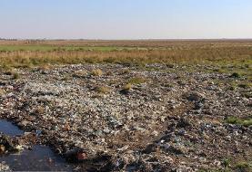 (تصاویر) کشاورزی با آبهای آلوده و فاضلاب در ساوه
