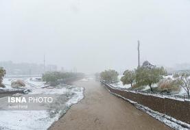پیشبینی بارش برف در مناطق زلزله زده