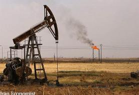 کشف میدان نفتی نام آوران، نگاه دنیا را به ایران تغییر خواهد داد
