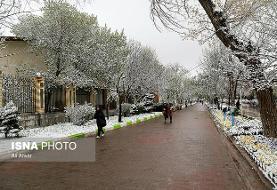 کاهش دمای هوا از عصر امروز / احتمال بارش برف در پایتخت از شنبه