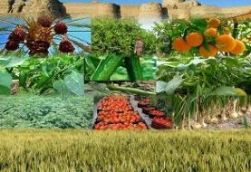 در حوزه کشاورزی و نظام مهندسی به دنبال هم پیوندی نظام بازار با تولید هستیم