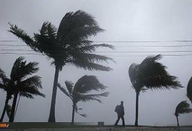 رگبار باران و باد شدید /خلیجفارس و سواحل بوشهر مواج میشود
