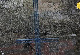 بارش سنگین برف و باران در راه است